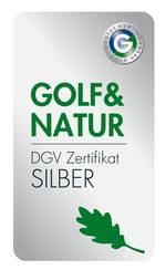 Logo Silber